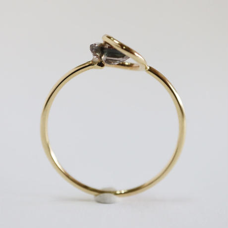 Circle ring / Tourmaline Bicolor