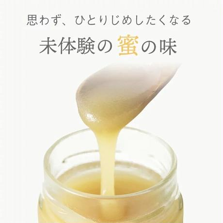 【好評につき展示会前先行販売!】 Artisan Honey Standard クリーミー生はちみつ 200g