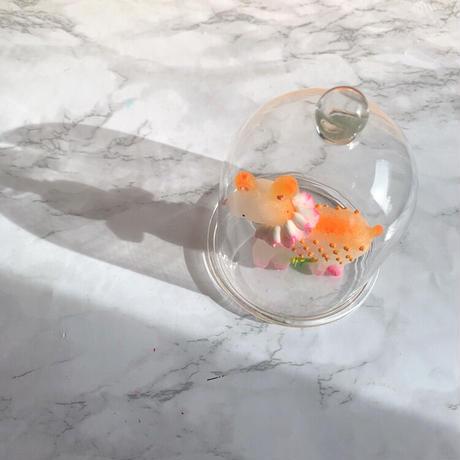 ガラスドーム M