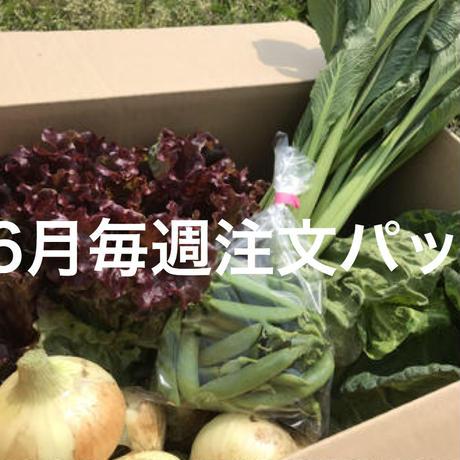 【6月毎週発送パック】季節野菜のセット ※税込、送料込 ※申込締切日5/31(日)