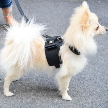 Bijou Dog Harness BLACK