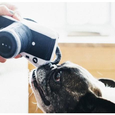 GLOBETROTTER TOYS Camera
