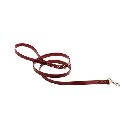 Art h1498Nvip leash Alissa