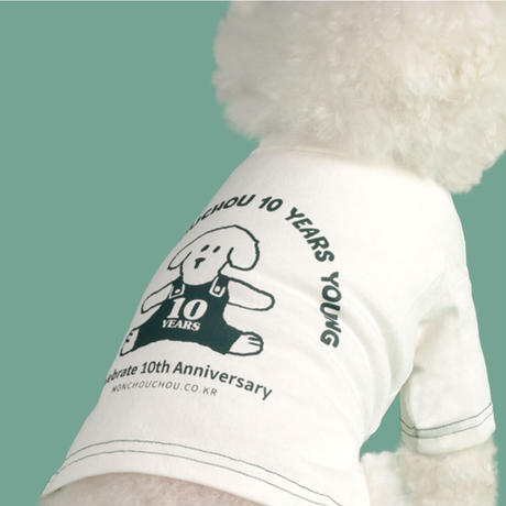 10th Anniversary Crop Top-White