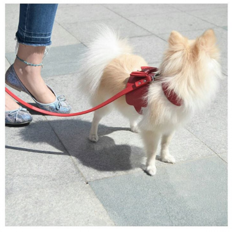Bijou Dog Harness RED