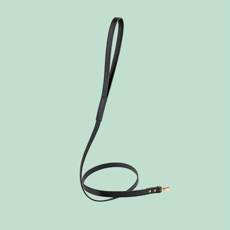 Balley Dog Leash BLACK