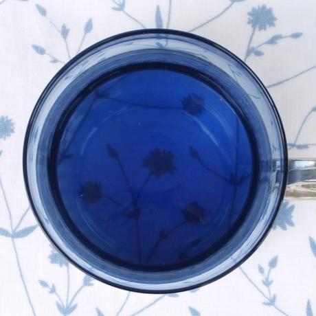 イッタラ Iittala ツァイッカ ホルダー付きグラス(ブルー×シルバー)