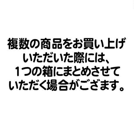 沖縄限定 鬼滅の刃キーホルダー 全9種