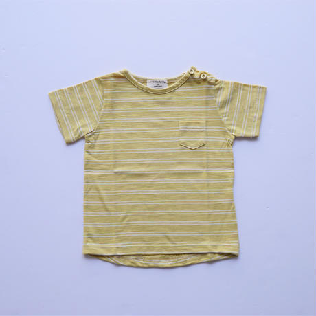 ボーダーTシャツ YELLOW×WHITE  (1+in the family ) 12M