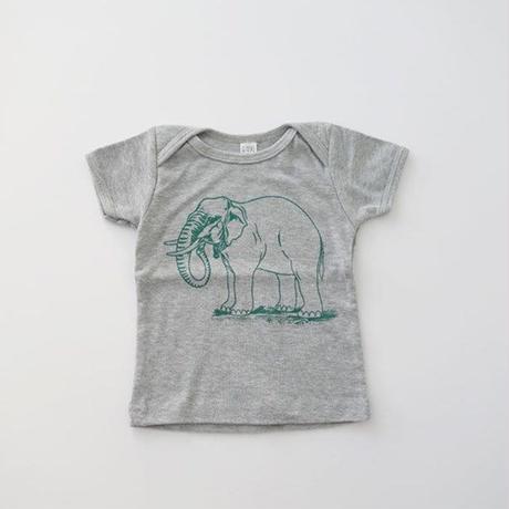 アニマルTシャツ for BABY GRAY (MAKIE) 6-12、12-18M