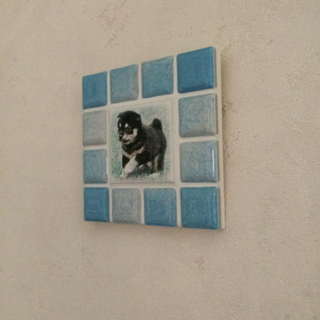 ブライトカラー/スカイブルー(S)◆Tile Picture Frame(S)/Bright Tone/SKY BLUE◆
