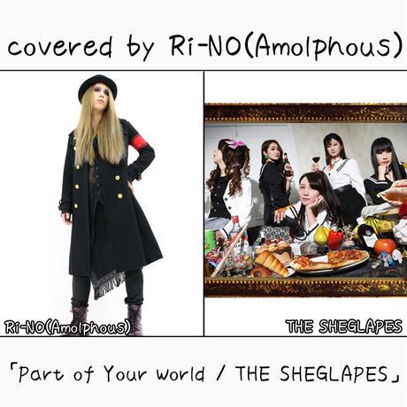 Ri-NO(Amolphous) が歌う THE SHEGLAPES『Part of Your World』