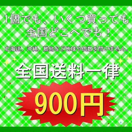 公式ステッカー付  スパシャン 超カミカゼ5 SPASHAN KAMIKAZE 洗車 カーケア コーティング剤  光沢