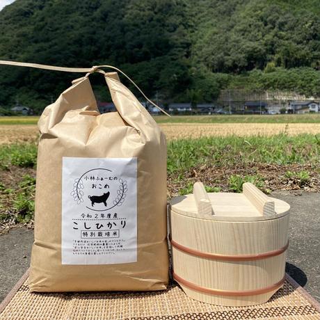 白米 5キロ 京都丹波コシヒカリ 令和2年度産 特別栽培米