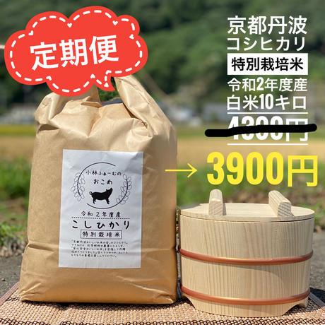 定期便 白米 10キロ 京都丹波コシヒカリ 令和2年度産 特別栽培米