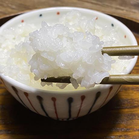 玄米 10キロ 京都丹波コシヒカリ 令和2年度産 特別栽培米