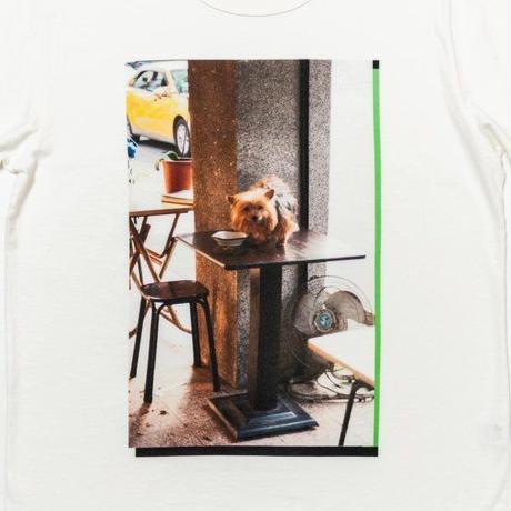 """TACOMA FUJI RECORDS タコマフジレコード """"Table Dog photography by Reiko Toyama designed by Satoshi Suzuki"""""""