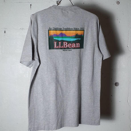 "L.L.Bean エルエルビーン""Carefree Unshrinkable Tee, Short-Sleeve Graphic 2"""