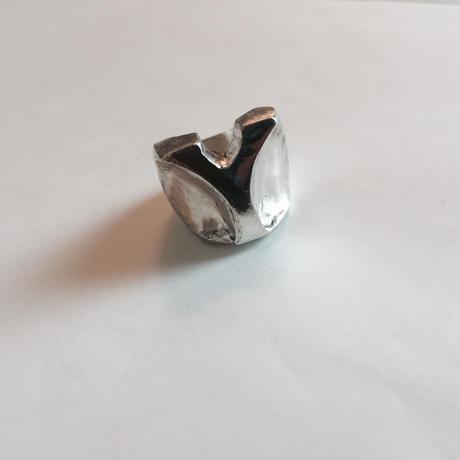 Big initial ring