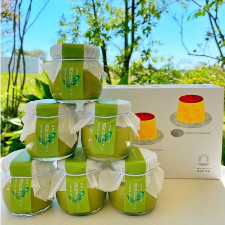 【予約分】5月8日発送 受注生産の濃厚抹茶プリン 6個セット