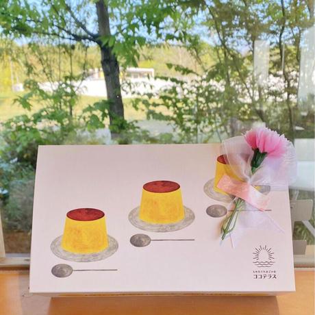 【送料無料※一部地域除く】母の日限定💐お花付きプリン&チーズケーキセット