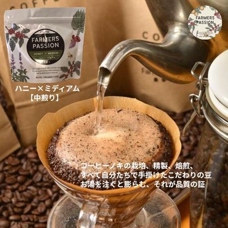 コーヒーノキの魅力セット