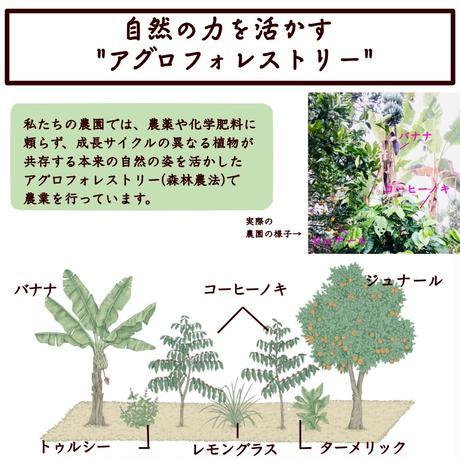 ハニー × ミディアム     150g