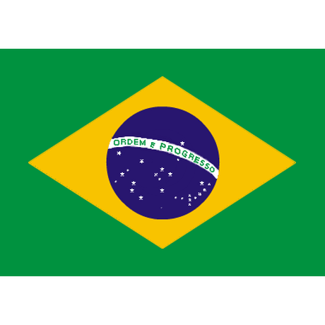 「香ばしい丸い苦味」ブラジル バージングランデ農園(フルシティロースト) 210g