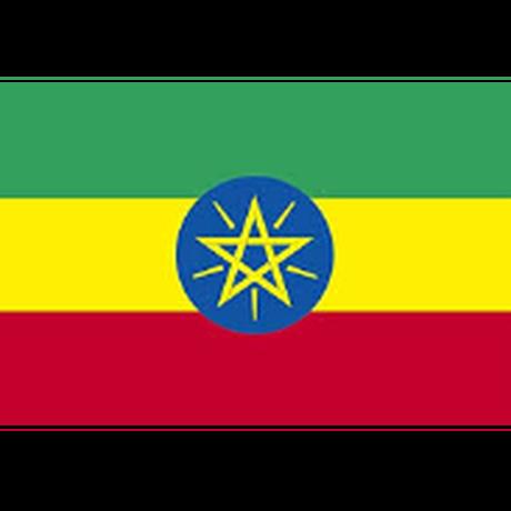 「華やかな明るさ」エチオピア イルガチェフェ ウェギダブルー(ミディアムロースト)200g