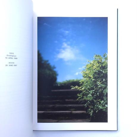 HUNTER GREEN  by TERRI WEIFENBACH
