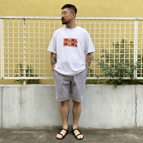 90's Polo by Ralph Lauren / Seersucker  No Tuck Shorts / White × Navy / Used(36)