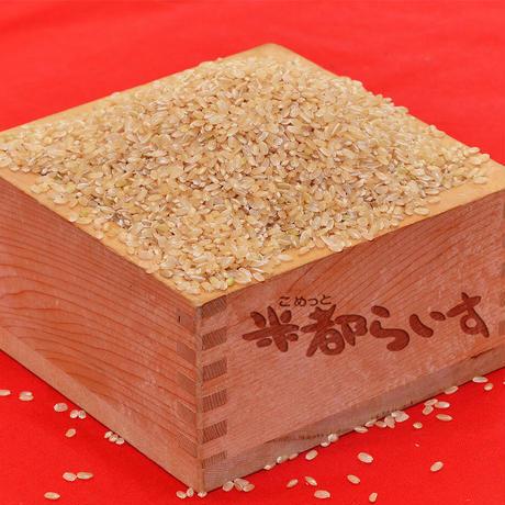 【玄米/新米】R2年産 米都菊池産ヒノヒカリ(30kg)