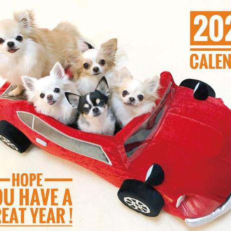 【送料無料】2020年『コナルト』壁掛けカレンダー
