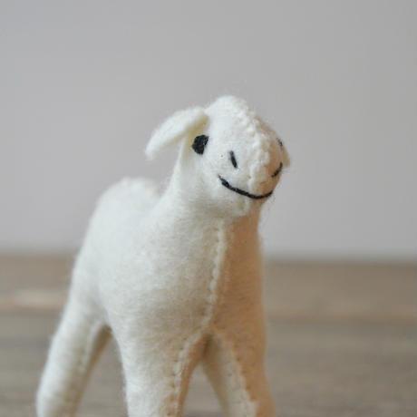 daladala. / モンゴルの羊毛 ひつじさん