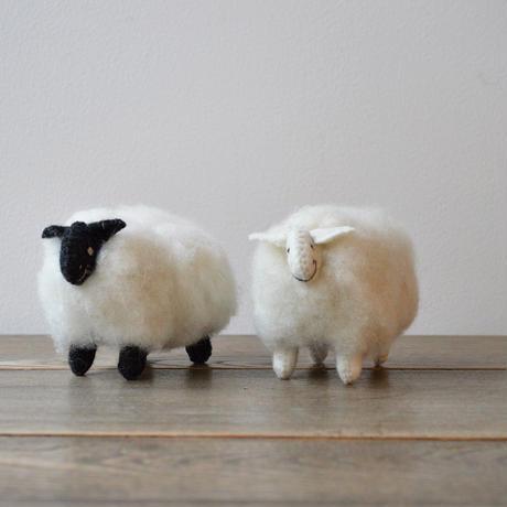 daladala. / モンゴルの羊毛 もこもこひつじ