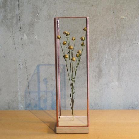 Showcase Long60 / copper【1012terra】