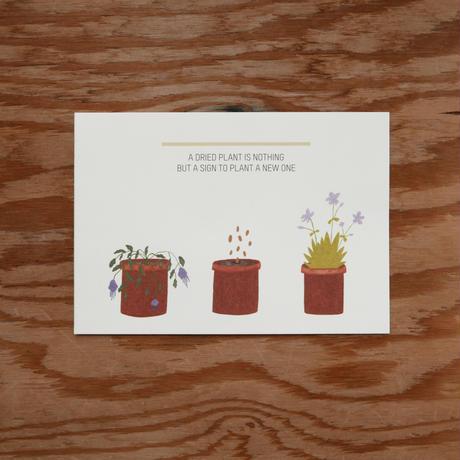 メラニーさんのカード 枯れた花