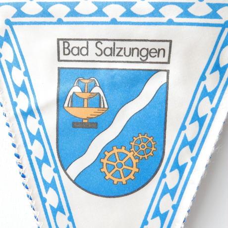 バードザルツンゲン ペナント