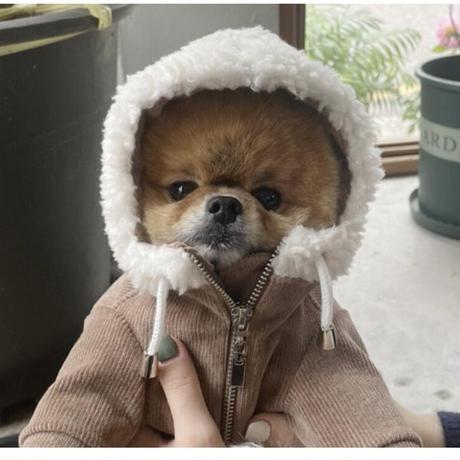 THERESTOFLIFE BOA zip hoodie brown