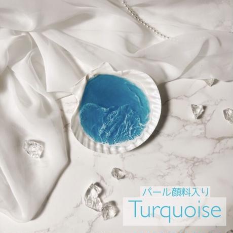 Sea shell tray