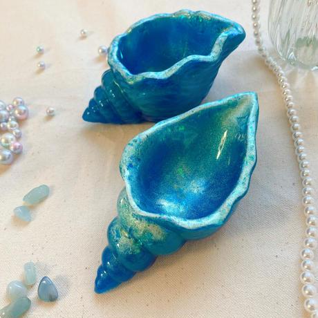 Conch bowl ②
