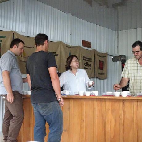 (焙煎豆)コスタリカ ブルンカ地方チリポ山付近 リベンス ブラックハニー 2018 500g