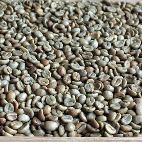 (生豆)コスタリカ ブルンカ地方チリポ山付近 リベンス ブラックハニー 2018 1kg