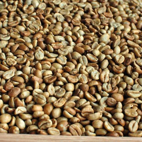 (生豆)コスタリカ ブルンカ地方チリポ山 リベンス ナチュラル 2019 1kg