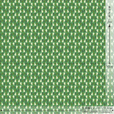 cheese -green (CO152164 D)