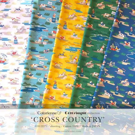 CROSS COUNTRY -turquoise (CO119573 B)