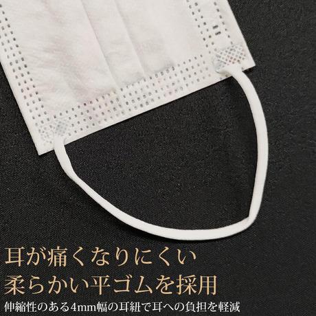 【日本製】10枚入り パラビオン柄 不織布 大阪工場直送