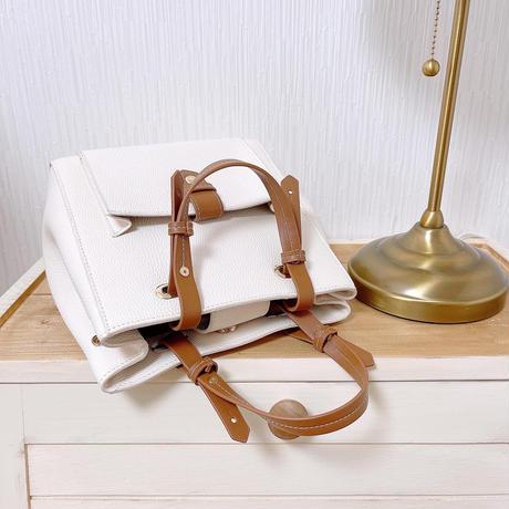 belt design 2 way bag