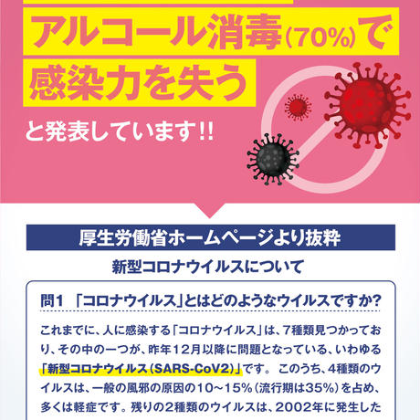 フローラ 除菌アルコールジェル 【 指定医薬部外品 】アルコール エタノール 100ml