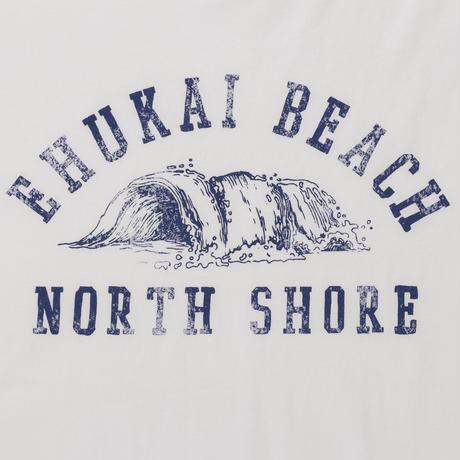 EHUKAI BEACH No.169